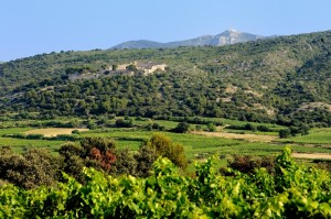 Montpeyroux Castellas et Mont-Baudile