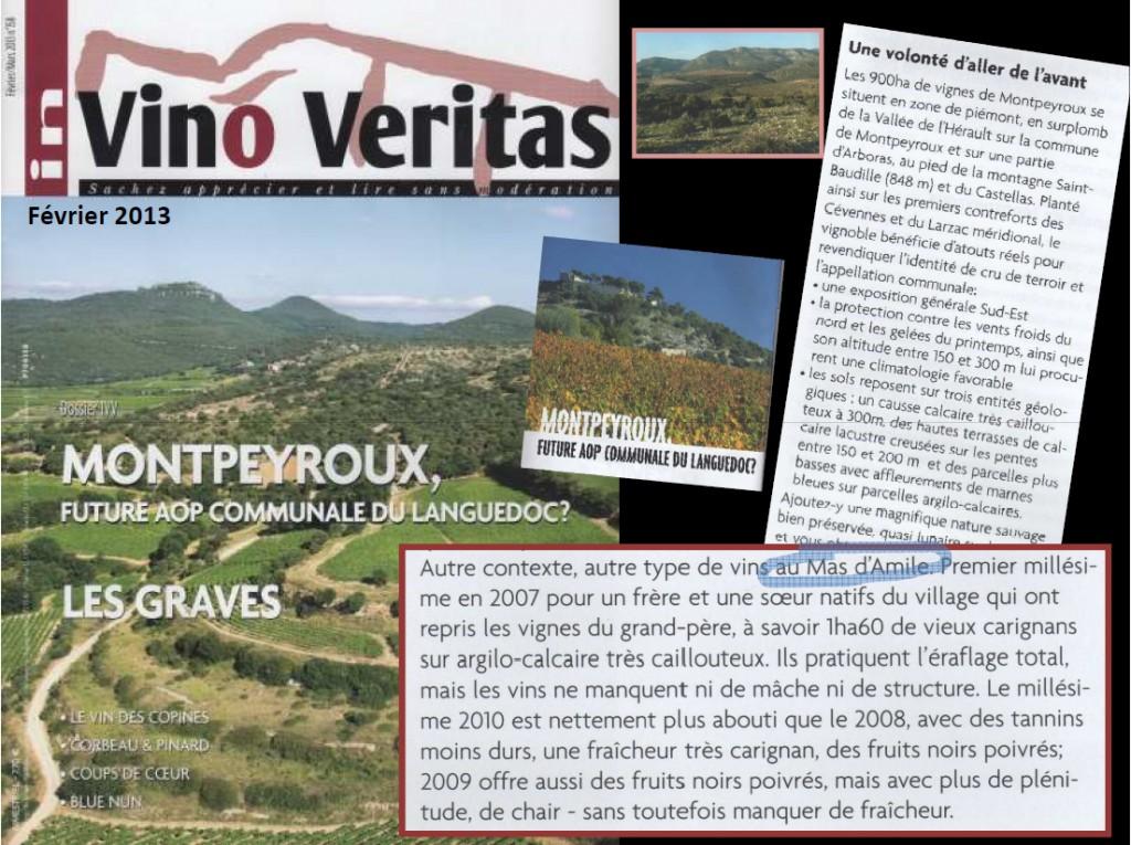 Presse-In-Vino-Veritas-Fevrier-2013